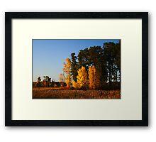 Fall in The Sherburne National Wildlife Refuge Framed Print
