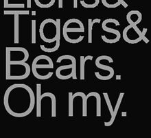 Lions and Tigers and Bears by ellieellieo