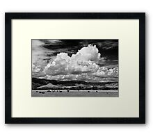 Colorado Cattle Ranch In Black and White Framed Print
