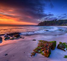 New South Wales Seascapes by Ian English