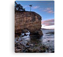 Fossil Cove, Tasmania Canvas Print