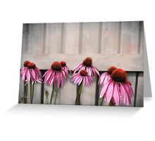 Coneflower Couples Greeting Card