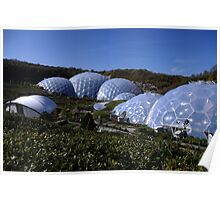 The Eden Biomes Poster