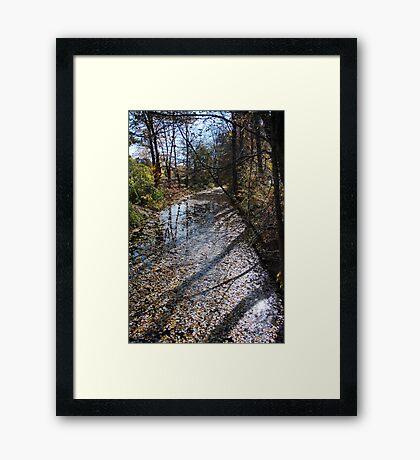 Canal Path Framed Print