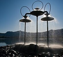 Fountain Spray by Tracy Riddell