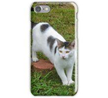 I Guess I Have A New Cat?! iPhone Case/Skin