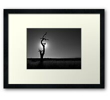 Scary Tree - Myponga Beach Road Framed Print