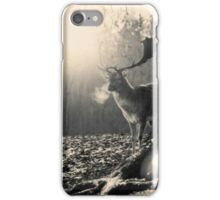 Stag in Winter iPhone Case/Skin