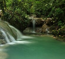 Mele Cascades, Vanuatu by Shane Galvin