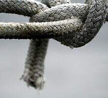 Sailers Knot by Sjkphotography