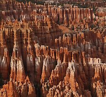 Bryce Canyon Castles by Gregory J Summers