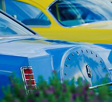 Lincoln Continental Mark V by Jill Reger