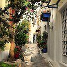 Little Greek Street  by larry flewers