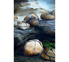 Chrome wrapped rocks Photographic Print