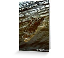 Saltwater Croc Greeting Card