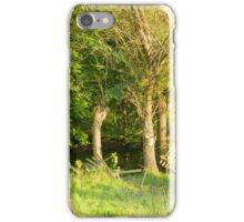 Pond in the forest iPhone Case/Skin