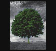 Glowing tree   by Rangi4