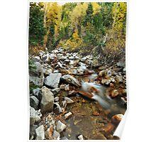 Stream - Little Cottonwood Canyon, Utah Poster