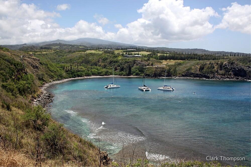 Honolua Bay, Maui by Clark Thompson