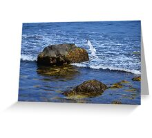 The Rocky Coast Line at Point Judith, RI [3] Greeting Card