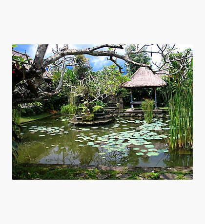 Exotic Experience - Ubud Village Bali Photographic Print