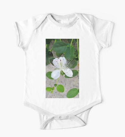 White flower of capers growing on a wall One Piece - Short Sleeve