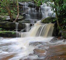 Somersby Falls,6-11-10,  by Warren  Patten