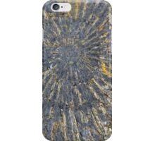Pyritized Ammonite iPhone Case/Skin
