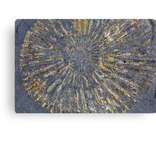 Pyritized Ammonite Canvas Print