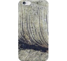 Fragile Fossil Plant Leaf iPhone Case/Skin