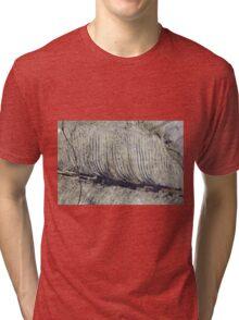 Fragile Fossil Plant Leaf Tri-blend T-Shirt