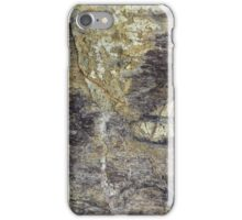 The Surface of Fossil Wood iPhone Case/Skin