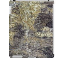 The Surface of Fossil Wood iPad Case/Skin