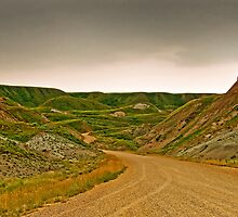 Road Through The Badlands by James Birkbeck