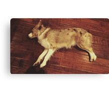Play Dead Canvas Print