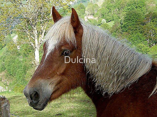 Blonde horse by Dulcina