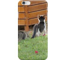 Following the Leader iPhone Case/Skin