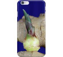 Ginger Seedling iPhone Case/Skin