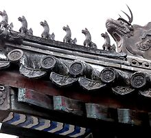 Rooftop, Forbidden City, Beijing, China by Dave Cauchi