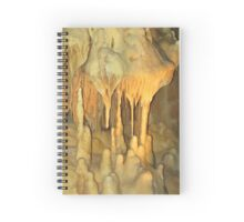 Columns of Ancient Past Spiral Notebook