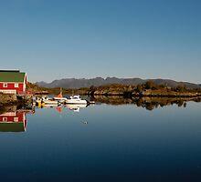 Quiet harbor, Lofoten by intensivelight