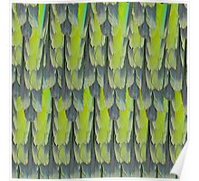 texture and background of colorful feathers of a parrot green Poster