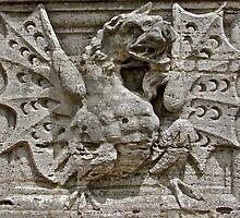 Dragon by John Thurgood