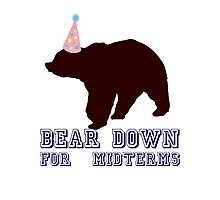 Bear Down For Midterms Photographic Print