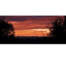 Surfers Paradise through the trees Photographic Print