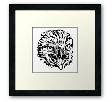 Eagle head predators Framed Print