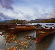 The Boats Of Derwent Water by Douglas  Latham