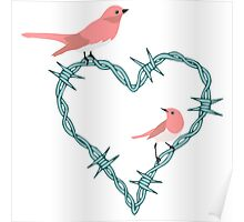 Barbed Wire Heart Birds Poster