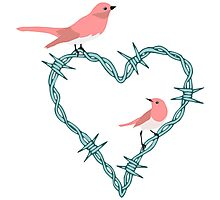 Barbed Wire Heart Birds Photographic Print