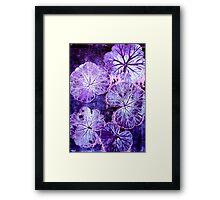 November's Garden 3 - Monoprint Framed Print